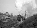 Steam hauled goods train at Knighton tunnel, Leicester