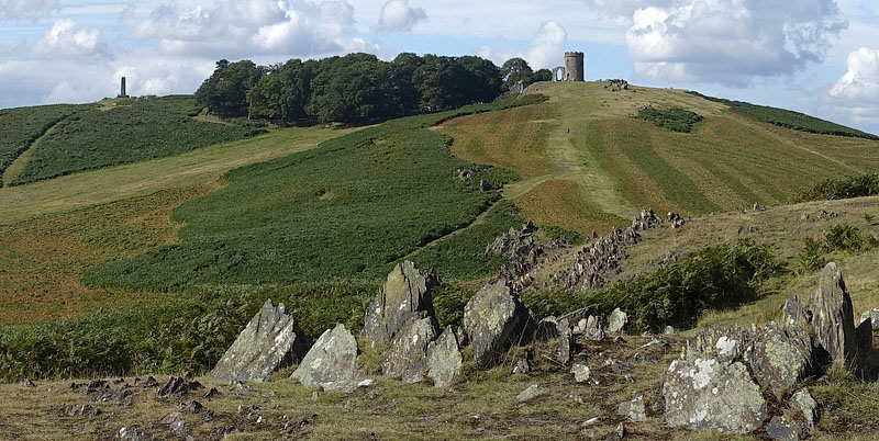 Bradgate Park, Leicestershire, Panorama photograph with Old John
